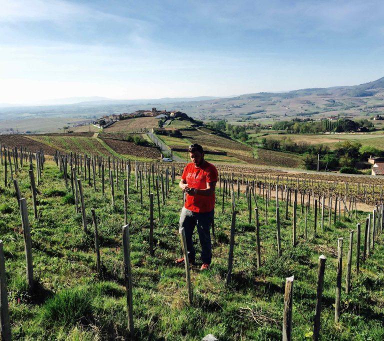 Sylvain Fadat, Domaine d'Aupilhac, dans ses vignes