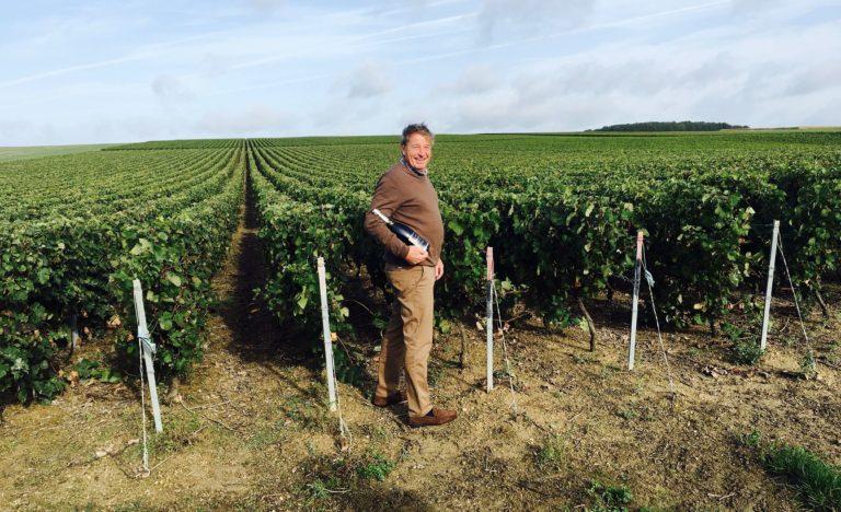 Raymond Leroy Dans Les Vignes