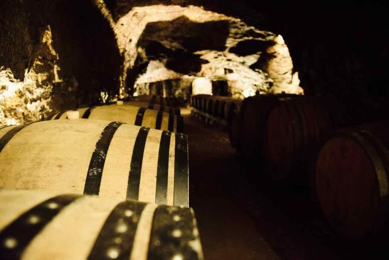 Vigneron France Roches Neuves En Cave1 Cici Olsson